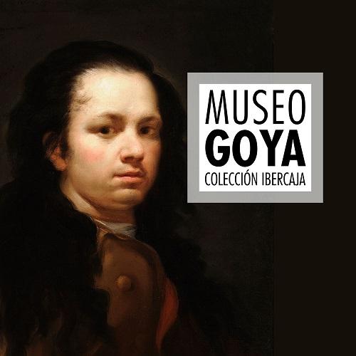 Imagen ENTRADA DE DIA - MUSEO GOYA